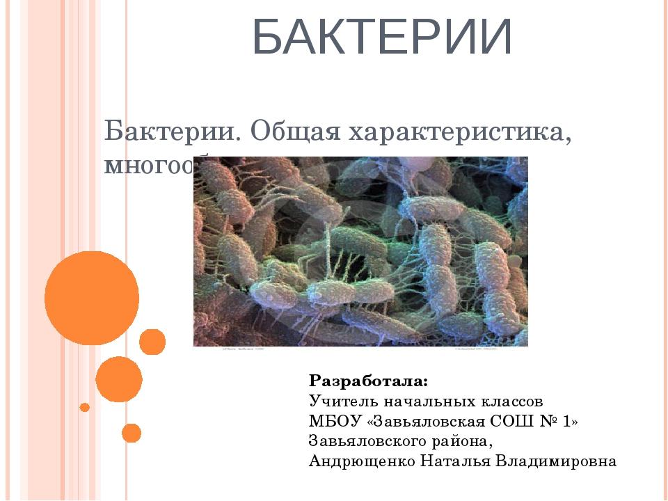 БАКТЕРИИ Бактерии. Общая характеристика, многообразие и значение Разработала:...