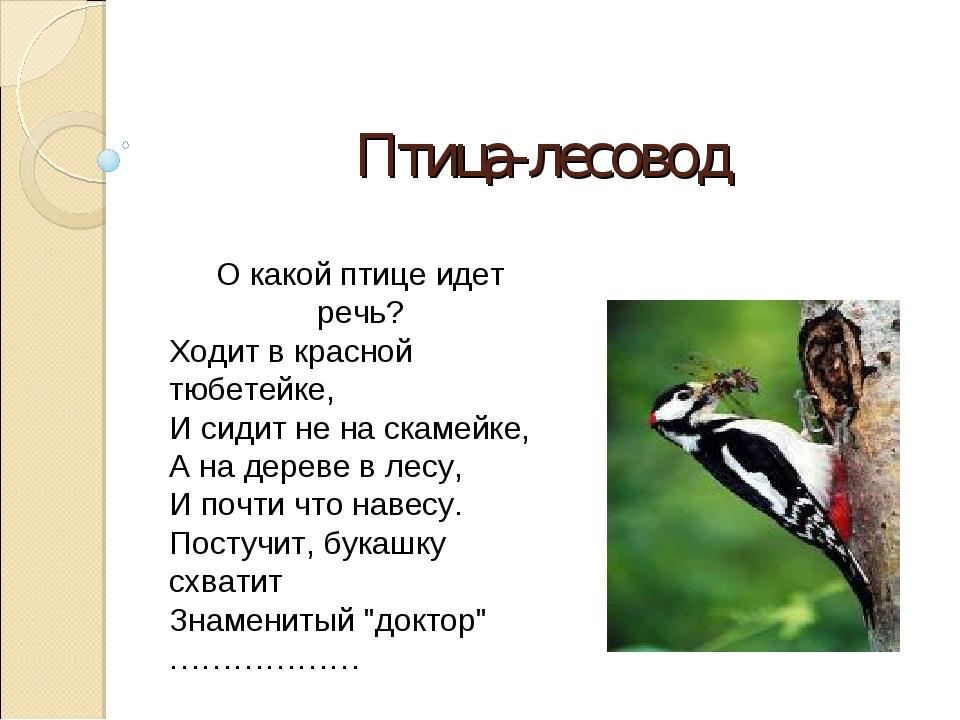 Птица-лесовод О какой птице идет речь? Ходит в красной тюбетейке, И сидит не...
