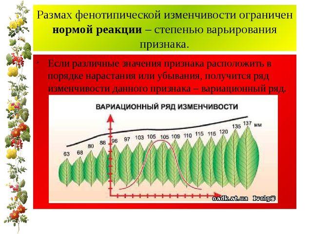 Размах фенотипической изменчивости ограничен нормой реакции – степенью варьир...