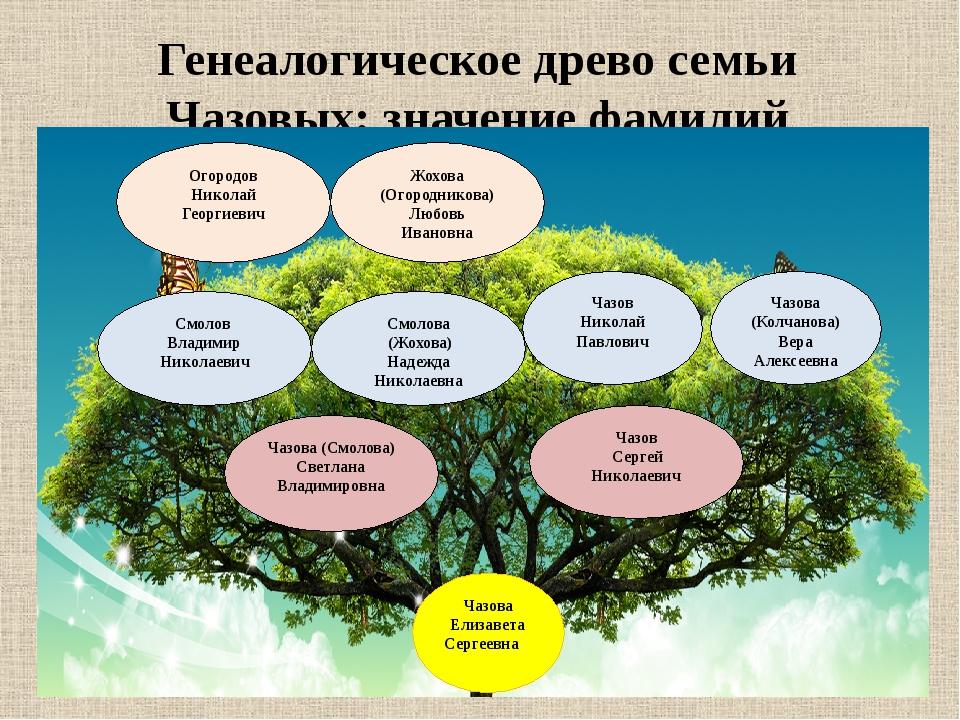 Генеалогическое древо семьи Чазовых: значение фамилий Чазова Елизавета Сергее...
