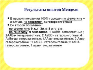 Результаты опытов Менделя В первом поколении 100% горошин по фенотипу – желты