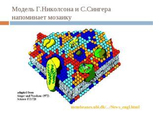 Модель Г.Николсона и С.Сингера напоминает мозаику membranes.nbi.dk/.../News_e