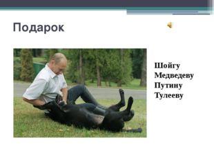 Подарок Шойгу Медведеву Путину Тулееву 1. Щенком эта собака воспитывалась в с