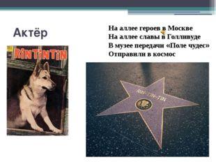 Актёр На аллее героев в Москве На аллее славы в Голливуде В музее передачи «П