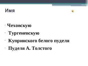 Имя Чеховскую Тургеневскую Купринского белого пуделя Пуделя А. Толстого Чехов