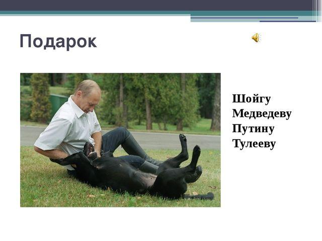 Подарок Шойгу Медведеву Путину Тулееву 1. Щенком эта собака воспитывалась в с...