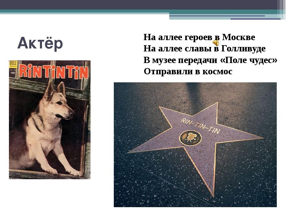 Актёр На аллее героев в Москве На аллее славы в Голливуде В музее передачи «П...