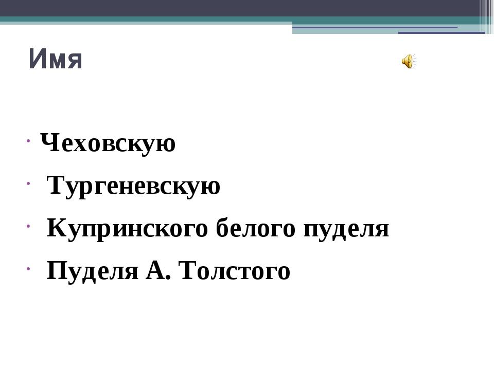 Имя Чеховскую Тургеневскую Купринского белого пуделя Пуделя А. Толстого Чехов...