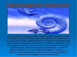 Происхождение головоногих: А было время, когда моря и океаны нашей планеты бу