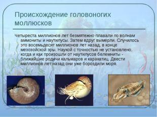 Происхождение головоногих моллюсков Четыреста миллионов лет безмятежно плавал
