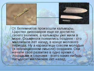 От белемнитов произошли кальмары. Царство динозавров еще не достигло своего