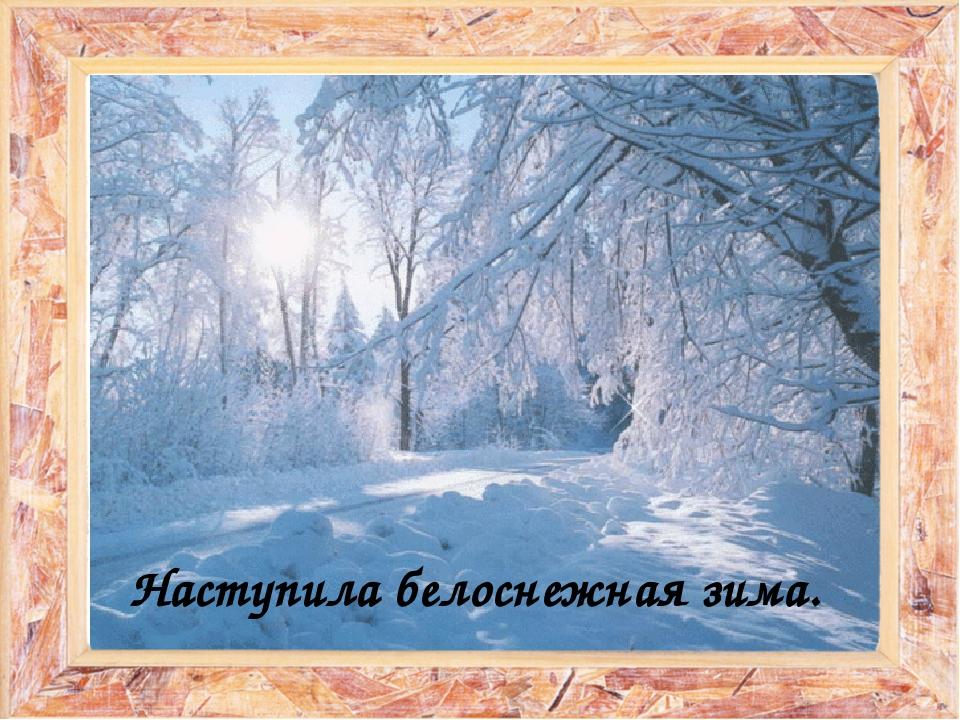 Наступила белоснежная зима.