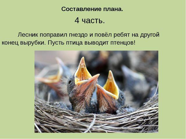 4 часть. Лесник поправил гнездо и повёл ребят на другой конец вырубки. Пусть...