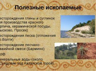 Полезные ископаемые Месторождения глины и суглинок для производства красного