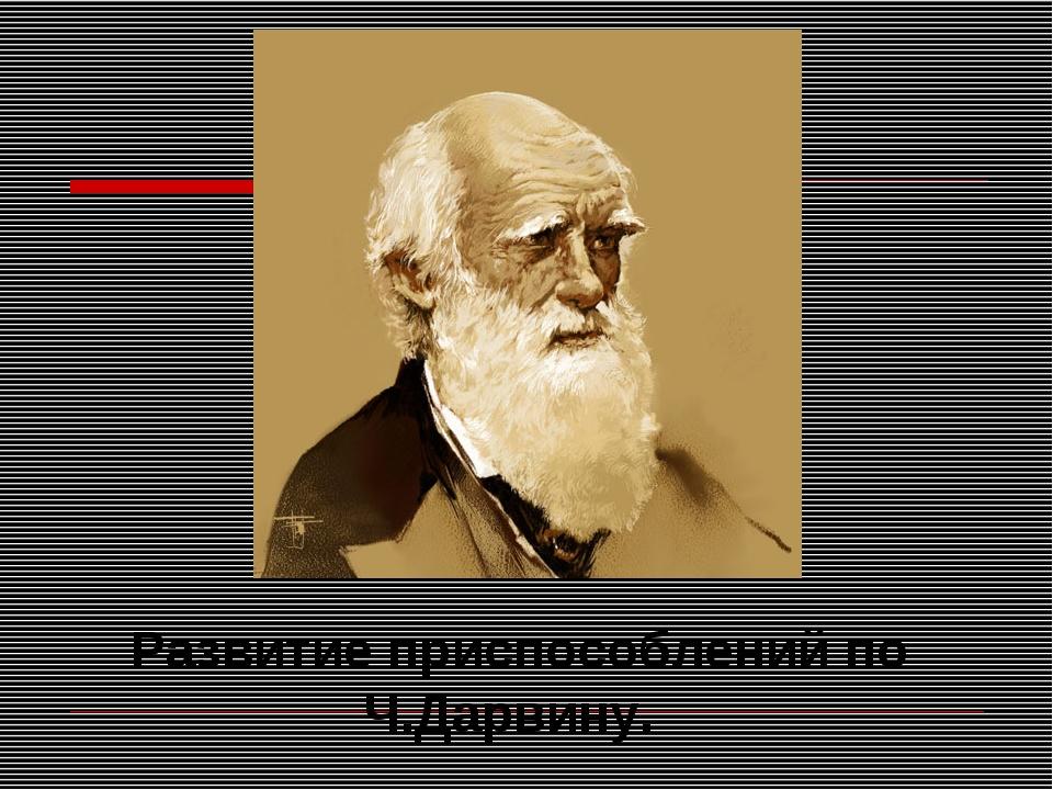 Развитие приспособлений по Ч.Дарвину.