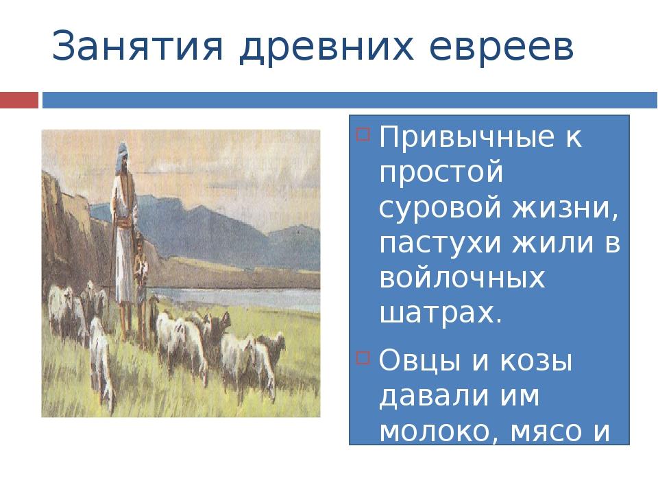 Занятия древних евреев Привычные к простой суровой жизни, пастухи жили в войл...