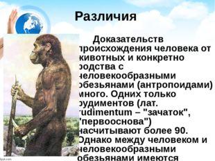 Различия Доказательств происхождения человека от животных и конкретно родства