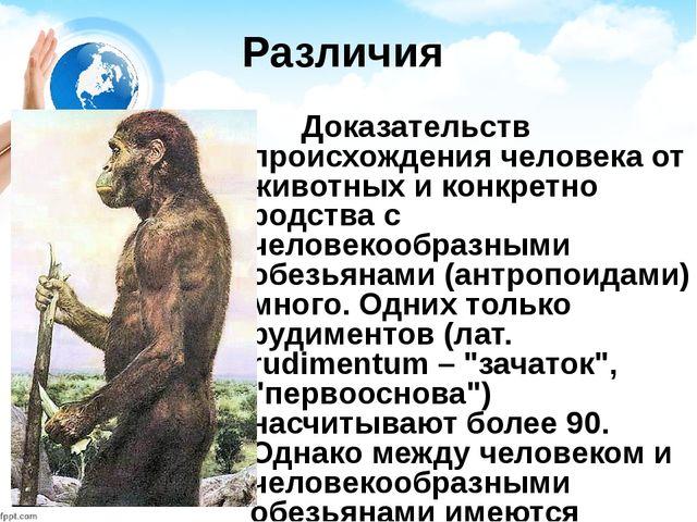 Различия Доказательств происхождения человека от животных и конкретно родства...