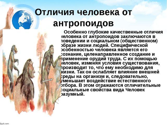 Отличия человека от антропоидов Особенно глубокие качественные отличия челове...