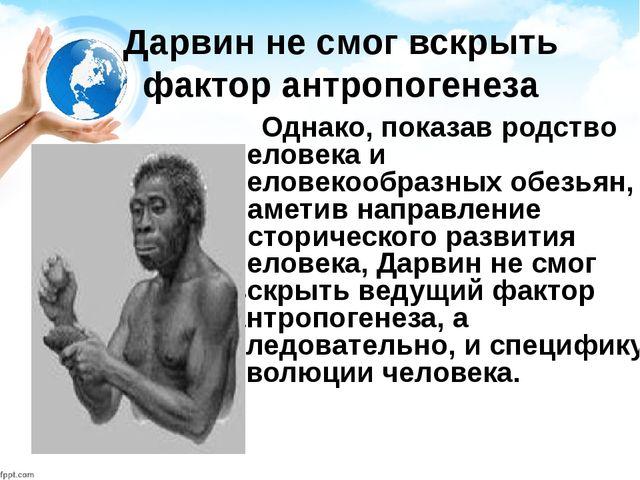 Дарвин не смог вскрыть фактор антропогенеза Однако, показав родство человека...