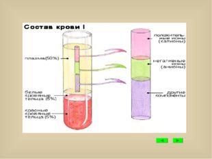 Гемоглобин Дыхательный пигмент красного цвета. Участвует в переносе кислорода.