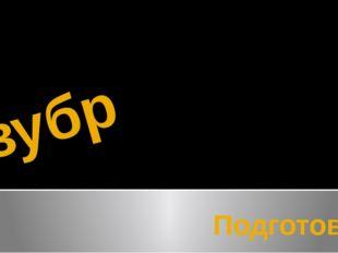 зубр Подготовил ученик начальных классов Лопатин Дмитрий 3В класса №38 школы