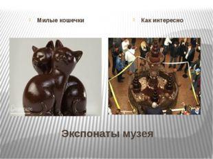 Экспонаты музея Милые кошечки Как интересно