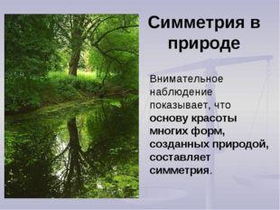 Симметрия в природе Внимательное наблюдение показывает, что основу красоты мн