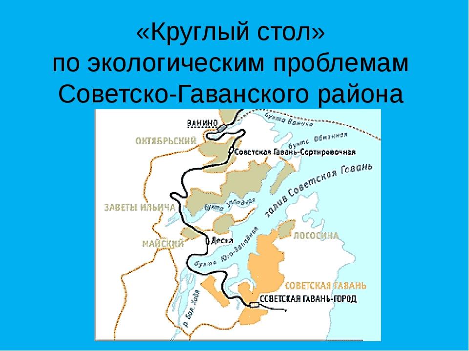 «Круглый стол» по экологическим проблемам Советско-Гаванского района