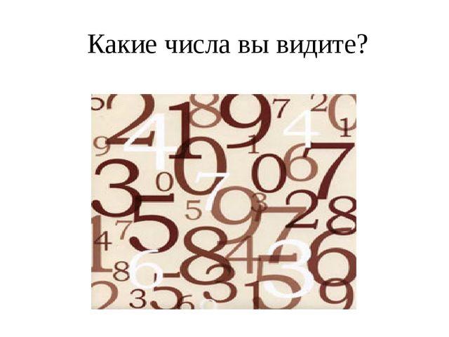 Какие числа вы видите?