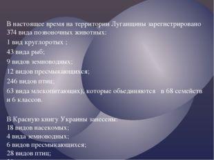 В настоящее время на территории Луганщины зарегистрировано 374 вида позвоночн