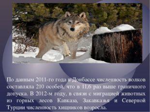 По данным 2011-го года в Донбассе численность волков составляла 210 особей, ч
