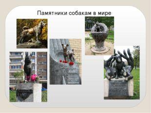 Памятники собакам в мире
