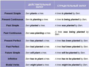 ДЕЙСТВИТЕЛЬНЫЙ ЗАЛОГСТРАДАТЕЛЬНЫЙ ЗАЛОГ Present SimpleBen plants a tree.A