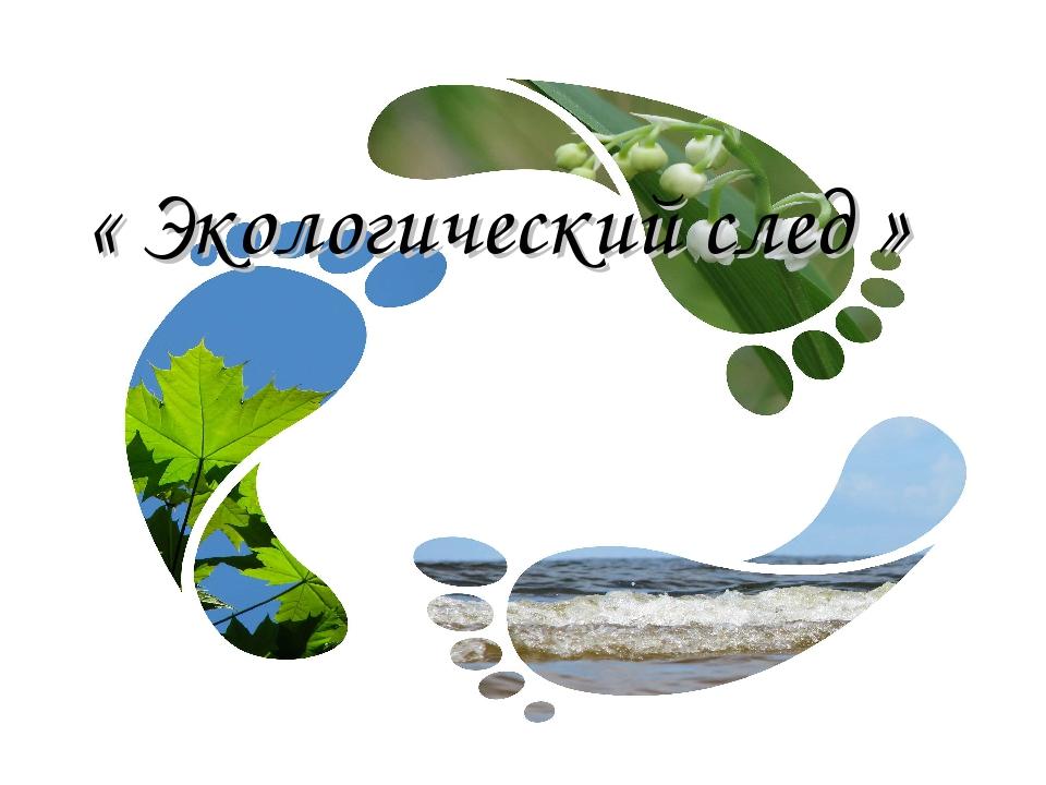 « Экологический след »