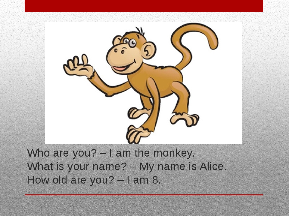 Who are you? – I am the monkey. What is your name? – My name is Alice. How ol...