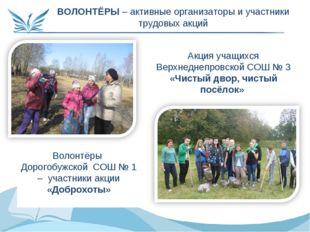 ВОЛОНТЁРЫ – активные организаторы и участники трудовых акций Акция учащихся В