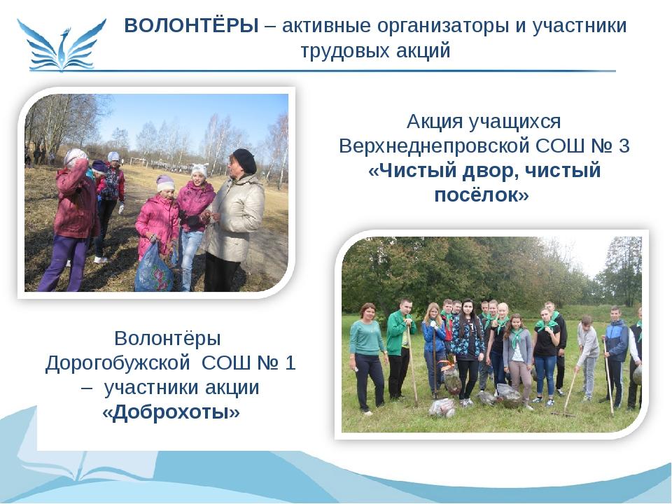 ВОЛОНТЁРЫ – активные организаторы и участники трудовых акций Акция учащихся В...