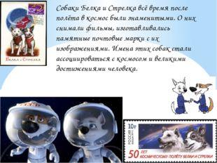 Собаки Белка и Стрелка всё время после полёта в космос были знаменитыми. О ни