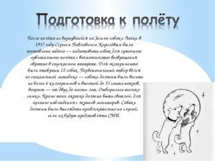 После полёта не вернувшейся на Землю собаки Лайки в 1957 году Сергеем Павлов