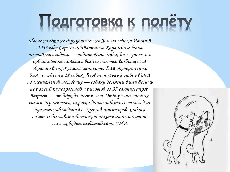 После полёта не вернувшейся на Землю собаки Лайки в 1957 году Сергеем Павлов...