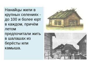 Нанайцы жили в крупных селениях - до 100 и более юрт в каждом, причём летом п
