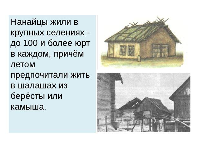 Нанайцы жили в крупных селениях - до 100 и более юрт в каждом, причём летом п...