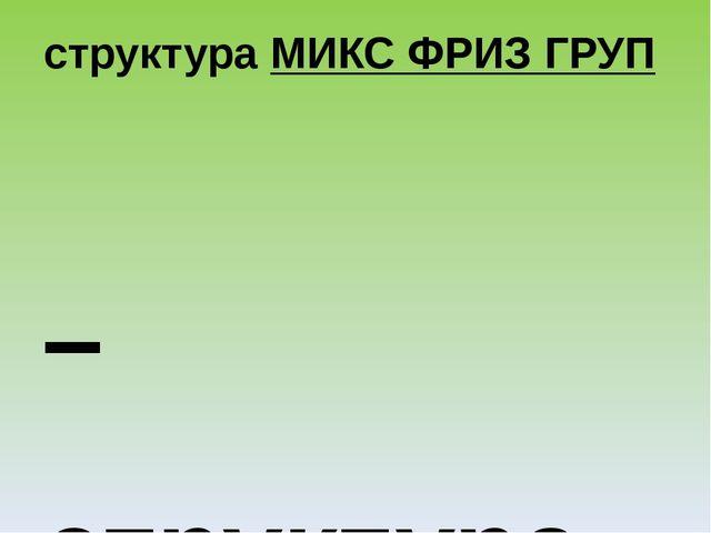 структураМИКС ФРИЗ ГРУП – структура, в которой участники смешиваются под му...