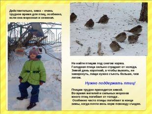 Действительно, зима – очень трудное время для птиц, особенно, если она морозн