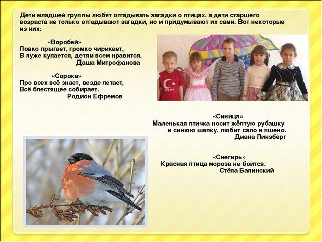 Дети младшей группы любят отгадывать загадки о птицах, а дети старшего возрас...
