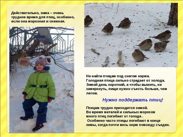 Действительно, зима – очень трудное время для птиц, особенно, если она морозн...