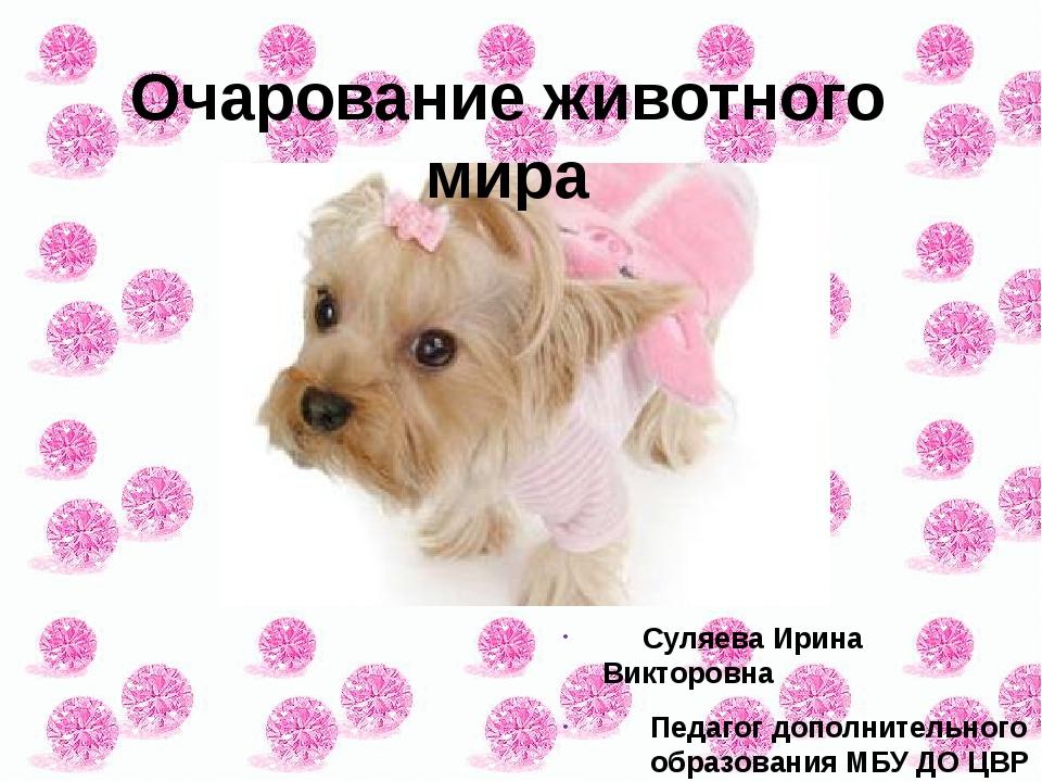 Суляева Ирина Викторовна Педагог дополнительного образования МБУ ДО ЦВР «Дос...