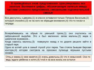 Все двинулись к дверям,(1) в классе оставался только Петруха Васильев,(2) кот