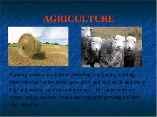 AGRICULTURE Farming is based on livestock breeding and poultry farming. More